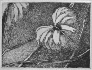 printmaking 023